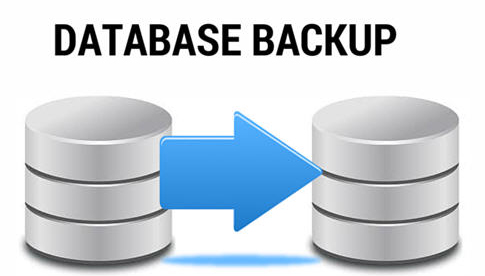 different types of Oracle backups
