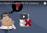 Repair Corrupted MS SQL Database